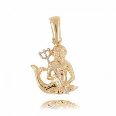 Złoty znak zodiaku Z2 WODNIK
